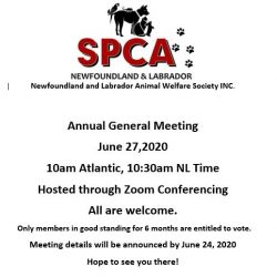 AGM  – June 27th, 2020